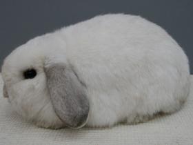 konijnendag026